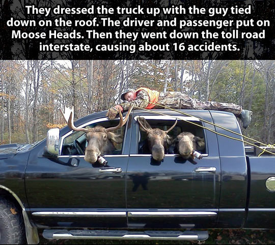 cool-hunter-moose-truck-forest-prank