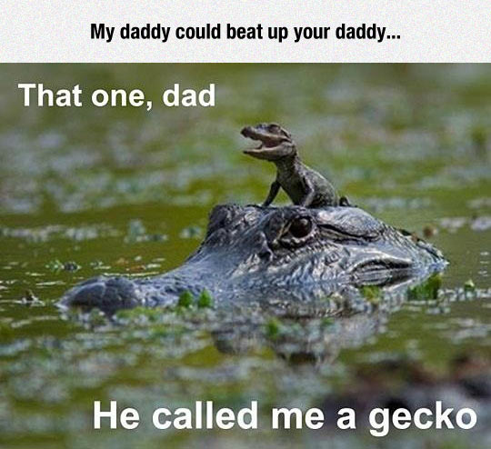 funny-crocodile-baby-father-swamp