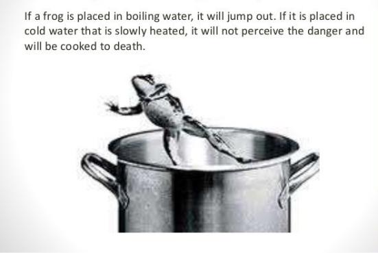 frogs-in-pot-e1539464046433.jpg